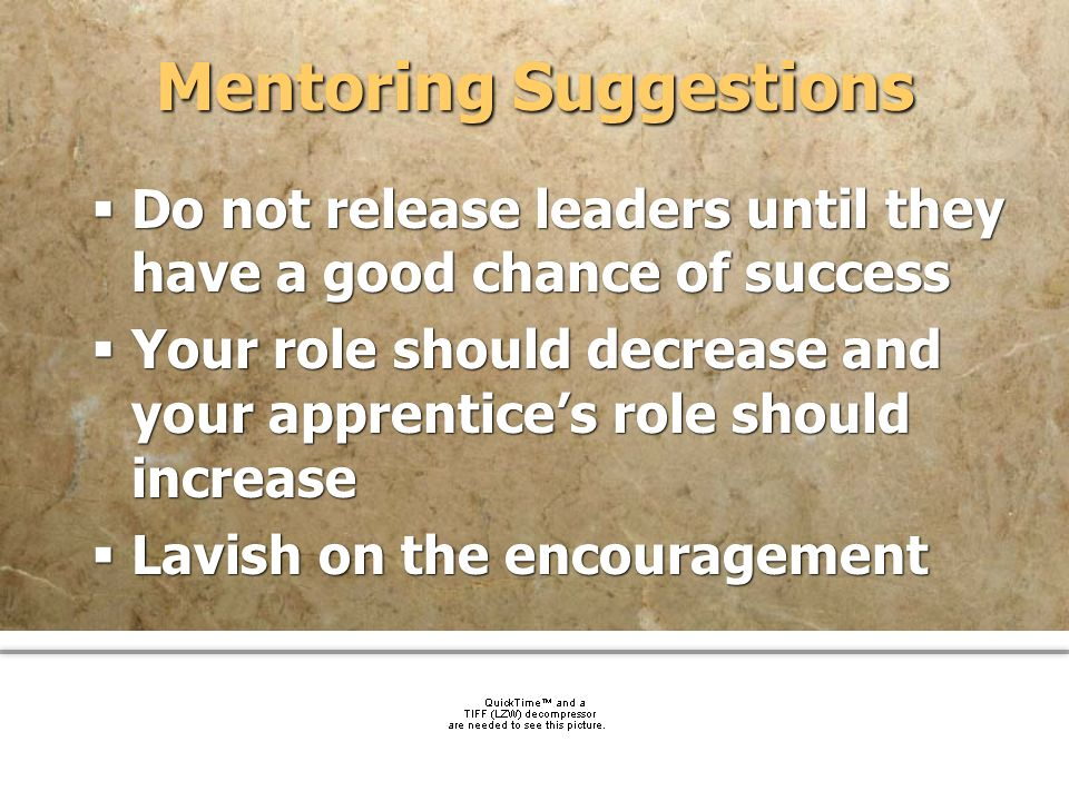 Mentoring Suggestions