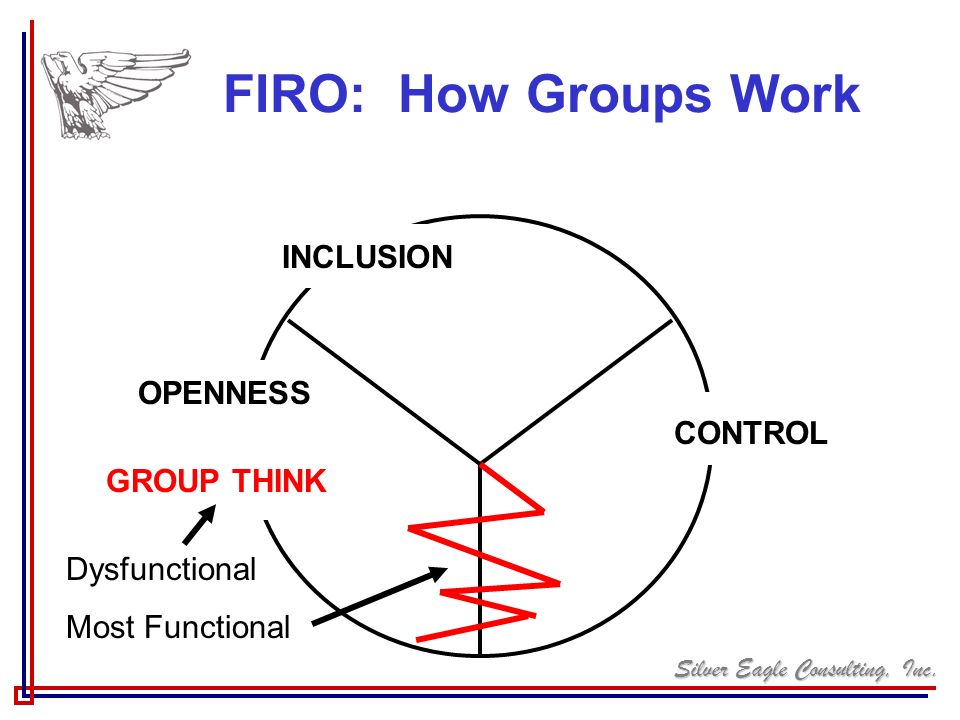 FIRO: How Groups Work INCLUSION OPENNESS CONTROL GROUP THINK