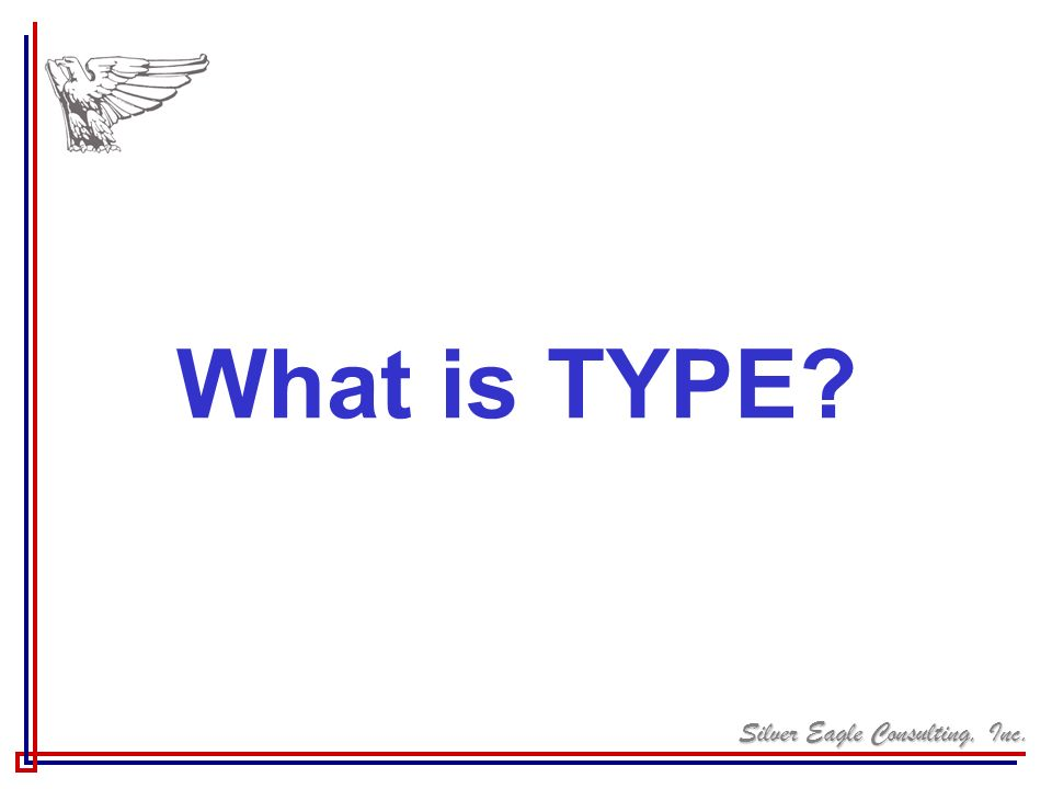 What is TYPE