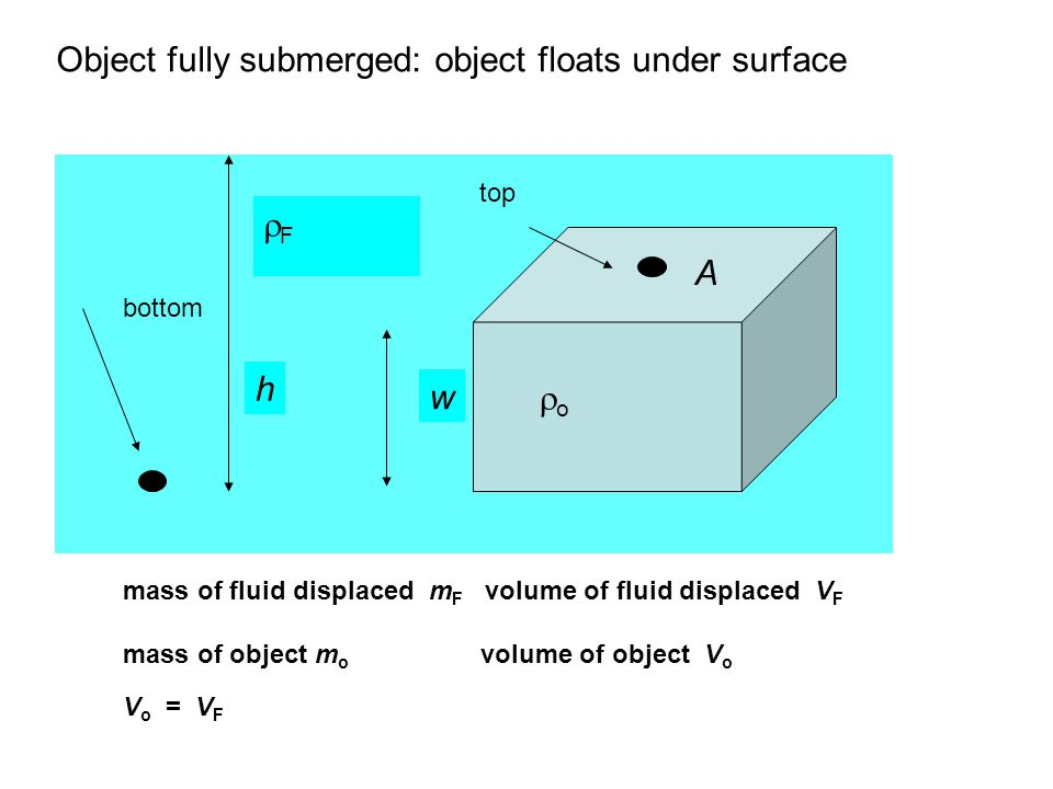 Object fully submerged: object floats under surface