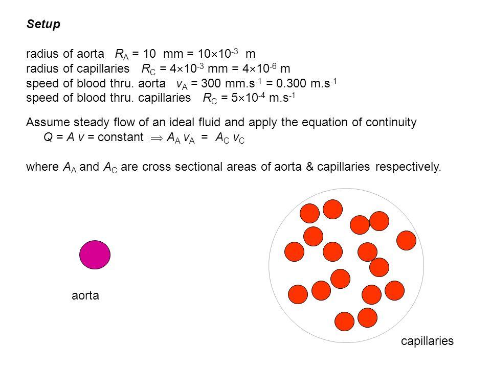 Setup radius of aorta RA = 10 mm = 1010-3 m. radius of capillaries RC = 410-3 mm = 410-6 m.