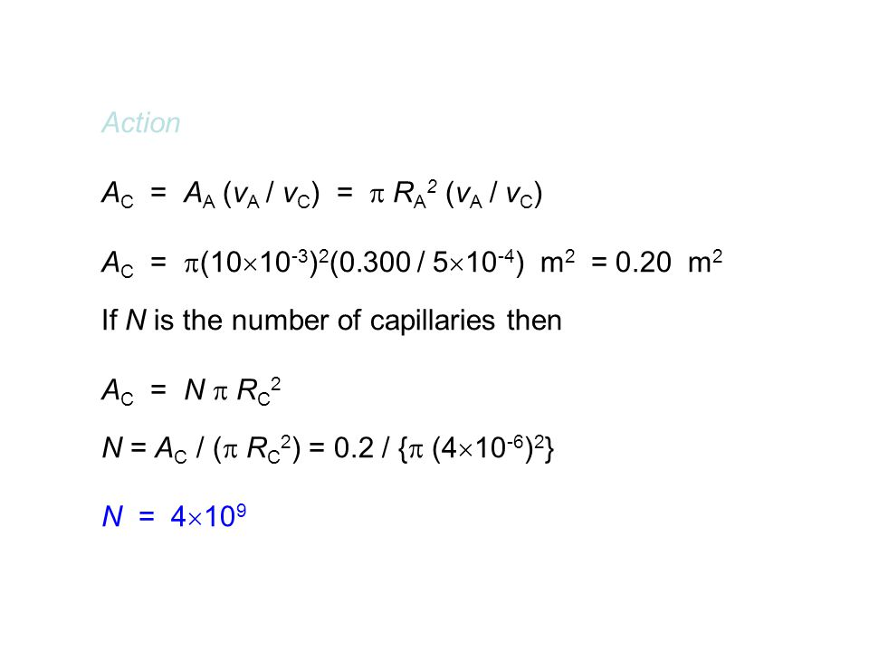 Action AC = AA (vA / vC) =  RA2 (vA / vC) AC = (1010-3)2(0.300 / 510-4) m2 = 0.20 m2.