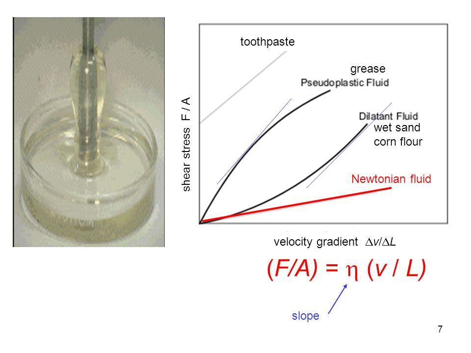 (F/A) =  (v / L) toothpaste grease shear stress F / A wet sand