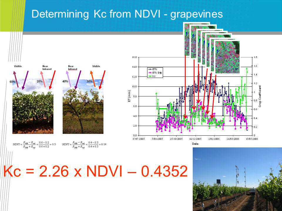 Determining Kc from NDVI - grapevines