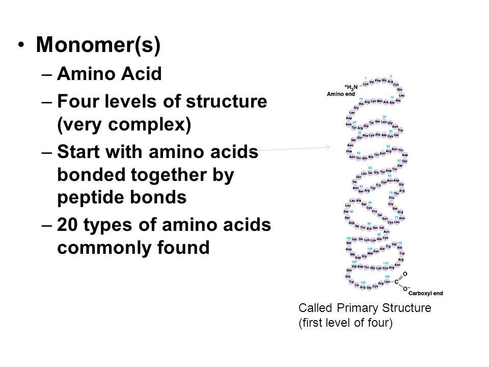 Monomer(s) Amino Acid Four levels of structure (very complex)