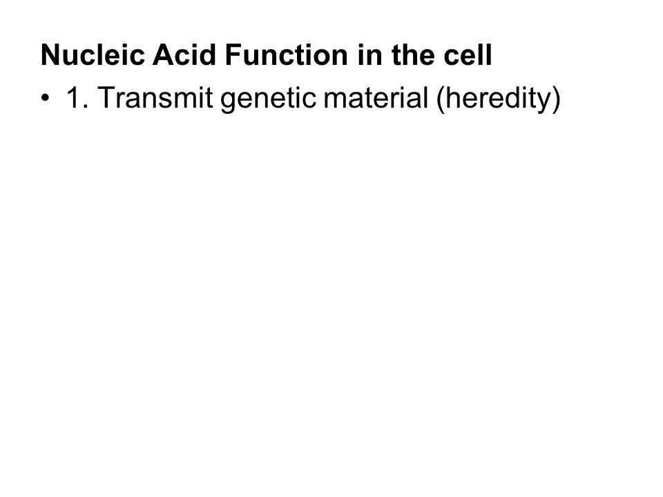 Nucleic Acid Function in the cell