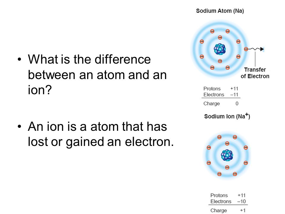 What is the difference between an atom and an ion