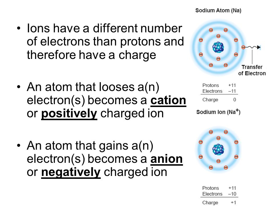 Ions have a different number of electrons than protons and therefore have a charge