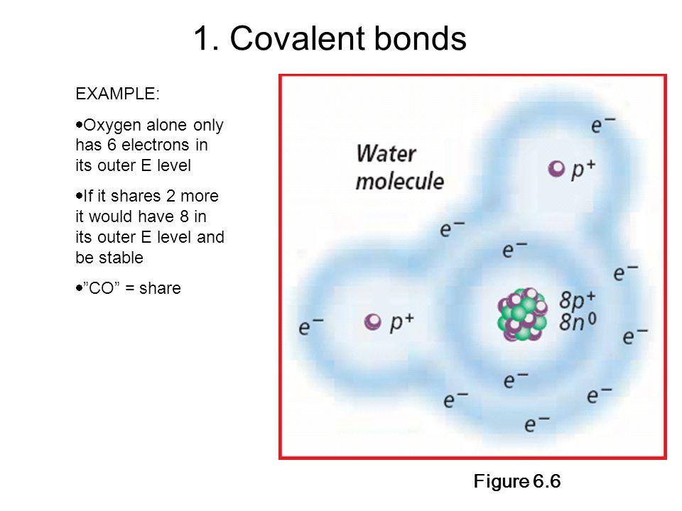 1. Covalent bonds Figure 6.6 EXAMPLE: