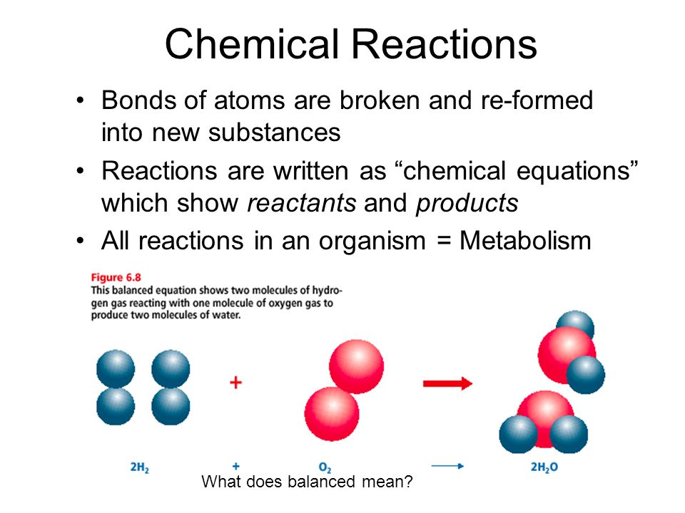 Chemical Reactions Bonds of atoms are broken and re-formed into new substances.
