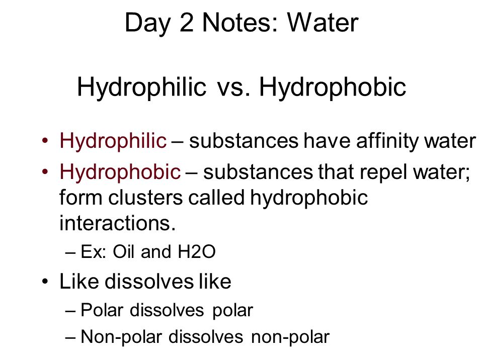 Day 2 Notes: Water Hydrophilic vs. Hydrophobic