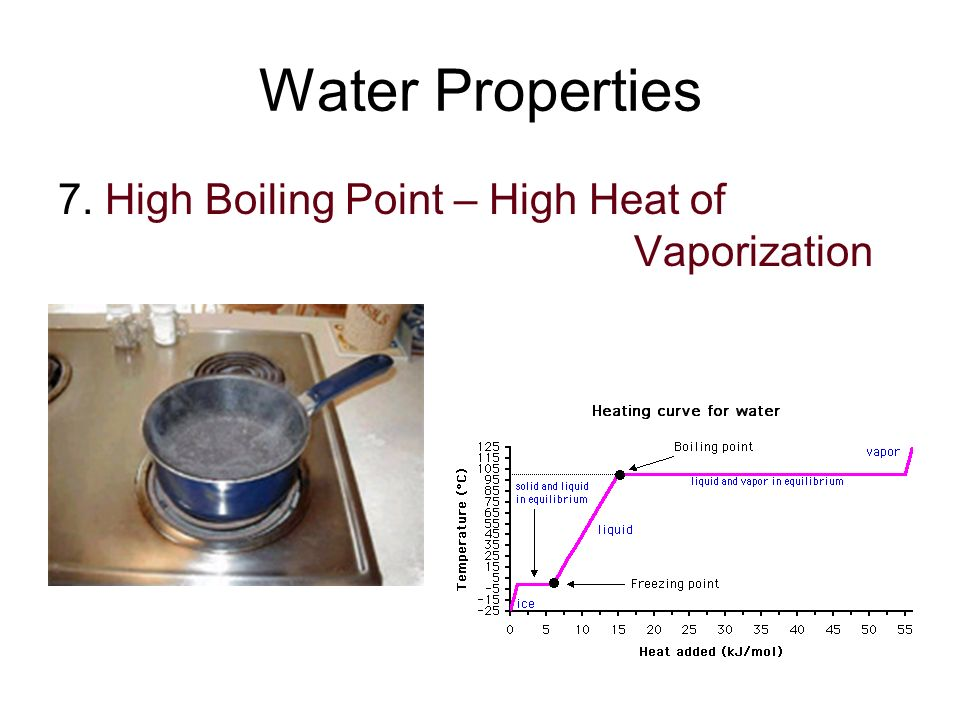 Water Properties 7. High Boiling Point – High Heat of Vaporization