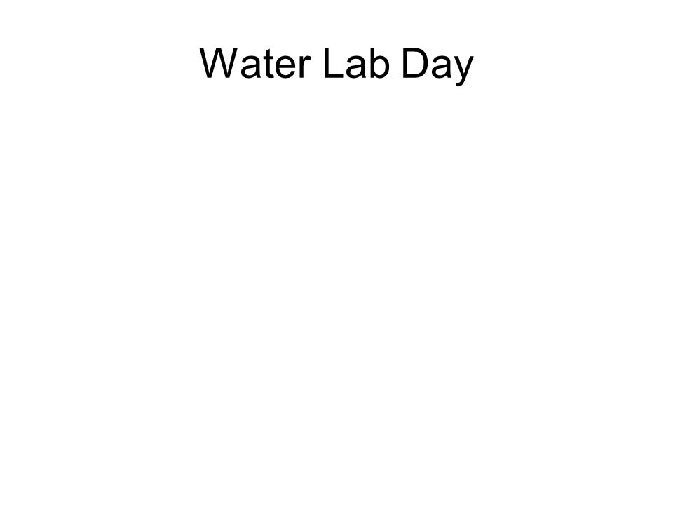 Water Lab Day