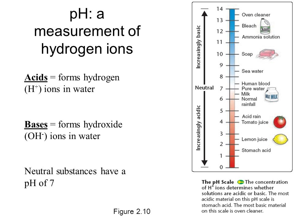 pH: a measurement of hydrogen ions