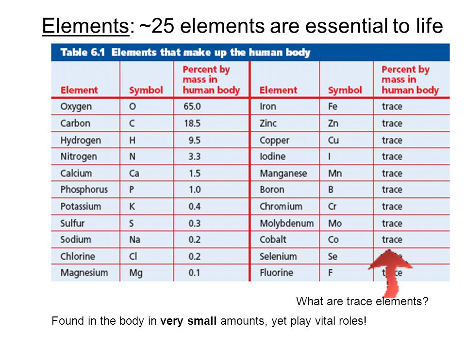 Elements: ~25 elements are essential to life