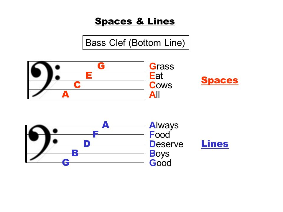 Spaces & Lines Bass Clef (Bottom Line) G. Grass. E. Eat. Spaces. C. Cows. A. All. A. Always.