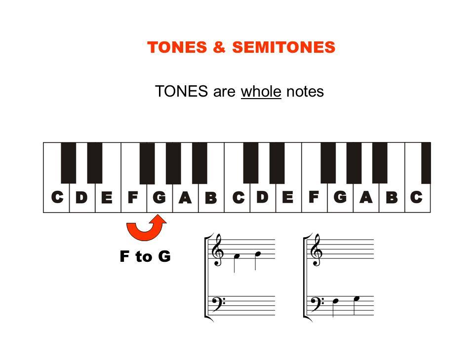 TONES & SEMITONES TONES are whole notes F to G