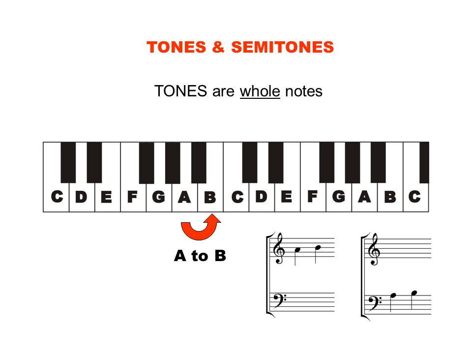 TONES & SEMITONES TONES are whole notes A to B