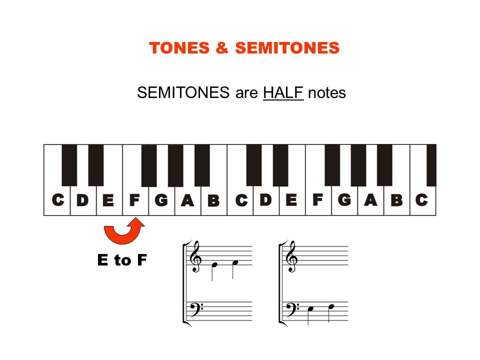 TONES & SEMITONES SEMITONES are HALF notes E to F