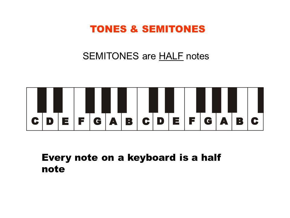 TONES & SEMITONES SEMITONES are HALF notes Every note on a keyboard is a half note