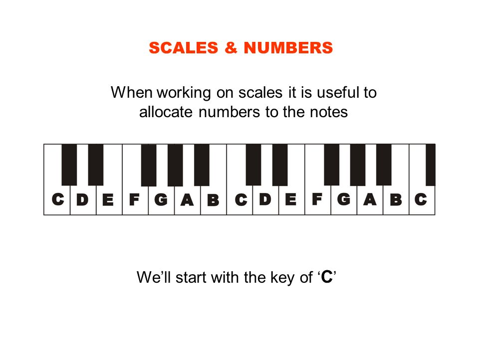 When working on scales it is useful to allocate numbers to the notes