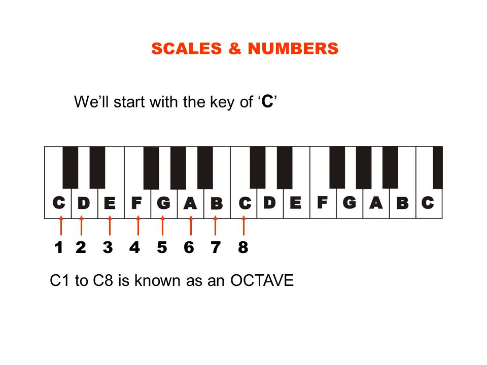 SCALES & NUMBERS We'll start with the key of 'C' 1 2 3 4 5 6 7 8.