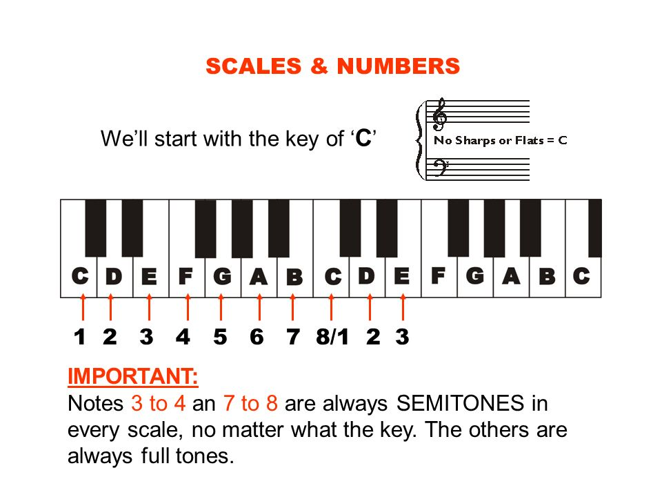 SCALES & NUMBERS We'll start with the key of 'C' 1 2 3 4 5 6 7 8/1 2 3.