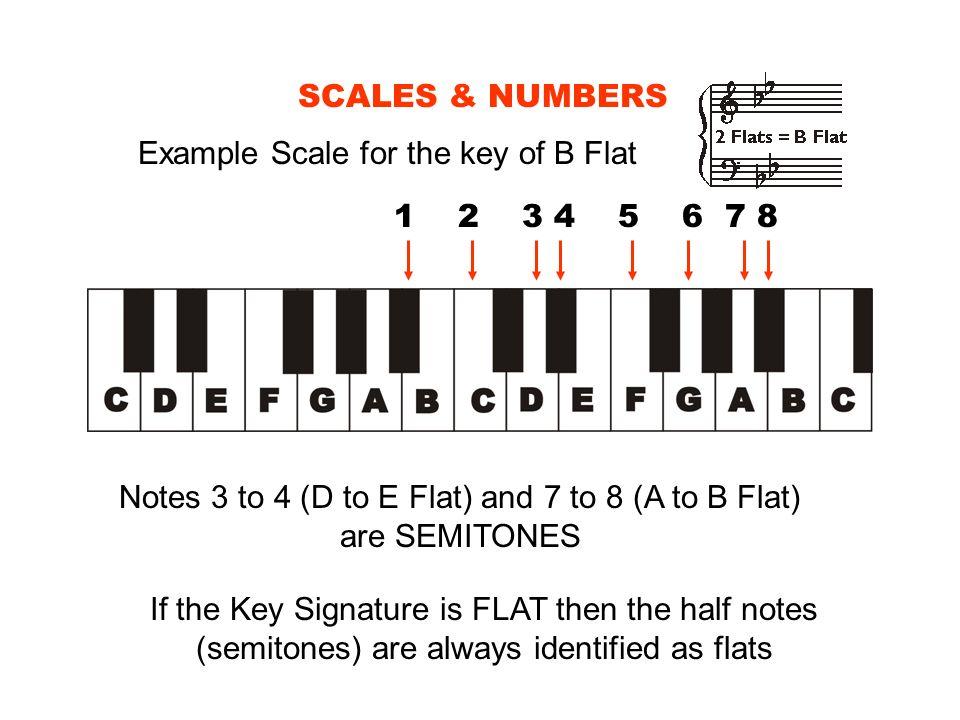 Notes 3 to 4 (D to E Flat) and 7 to 8 (A to B Flat) are SEMITONES