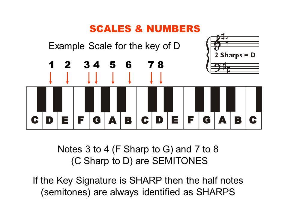 Notes 3 to 4 (F Sharp to G) and 7 to 8 (C Sharp to D) are SEMITONES