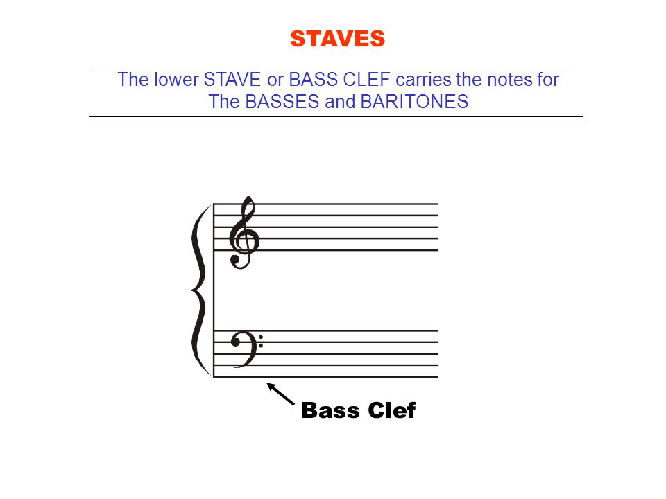 STAVES Bass Clef The lower STAVE or BASS CLEF carries the notes for