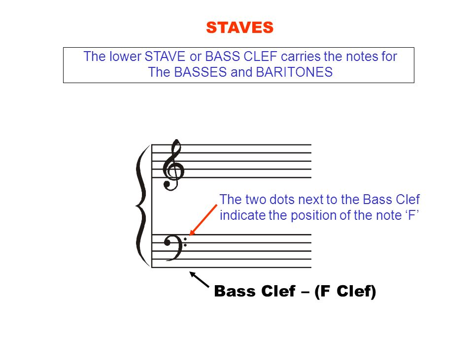 STAVES Bass Clef – (F Clef)