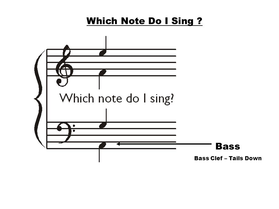 Which Note Do I Sing Bass Bass Clef – Tails Down