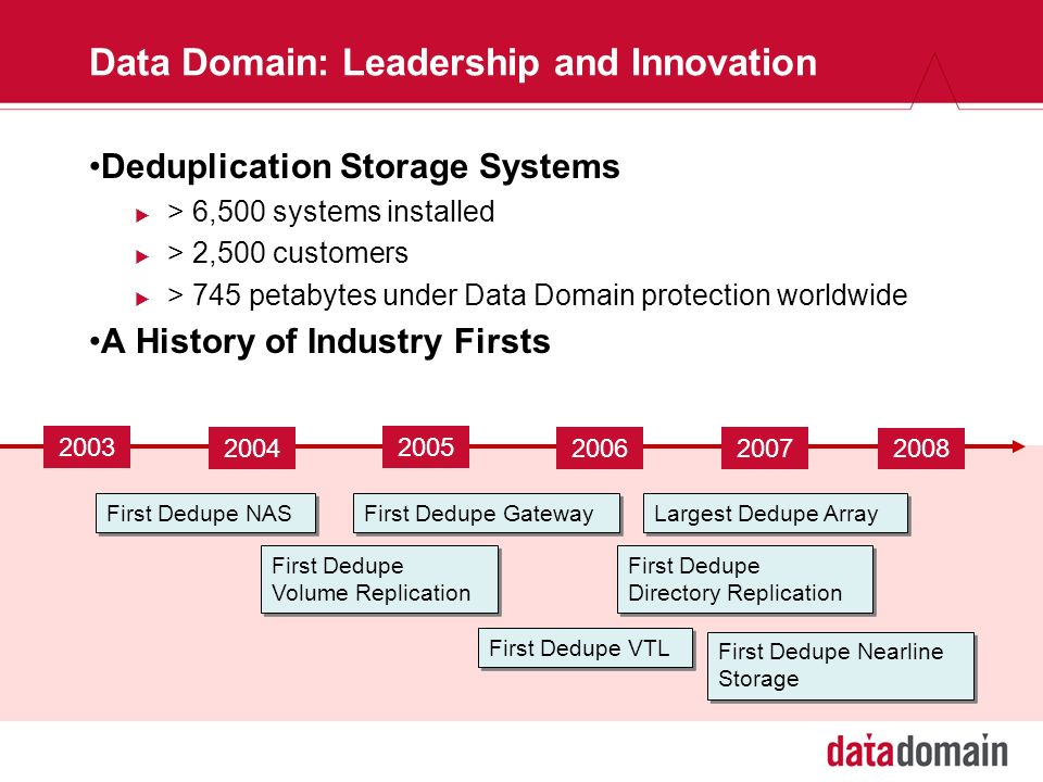 Data Domain: Leadership and Innovation
