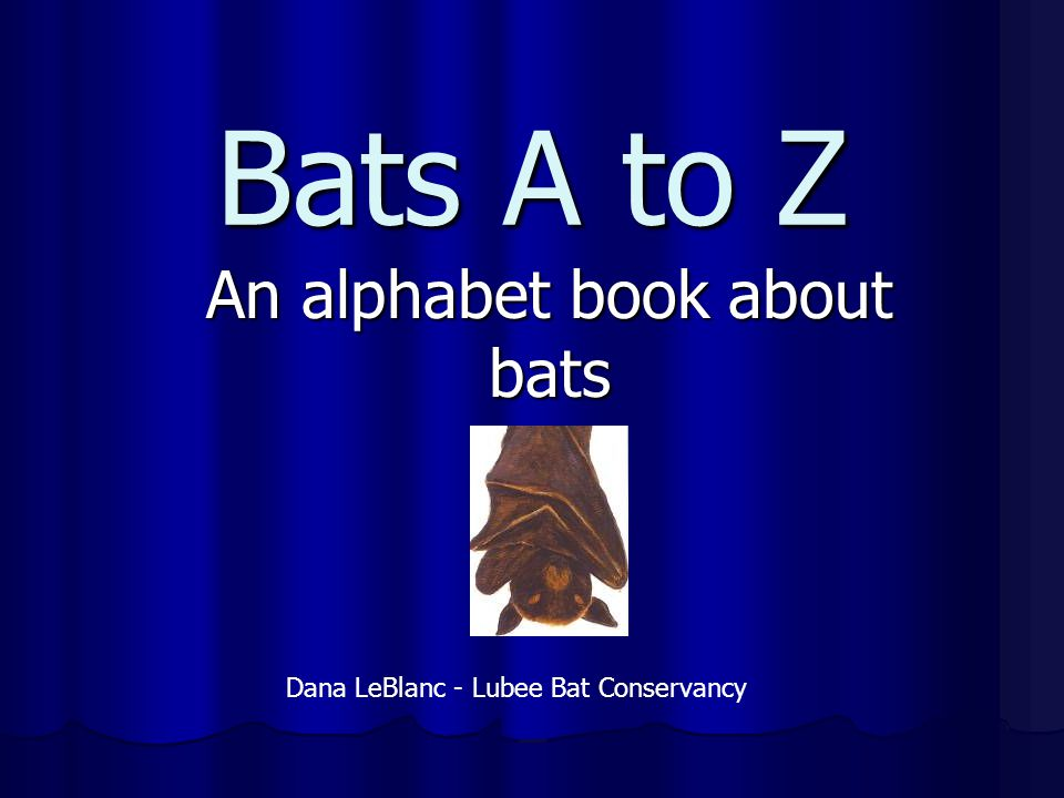 An alphabet book about bats