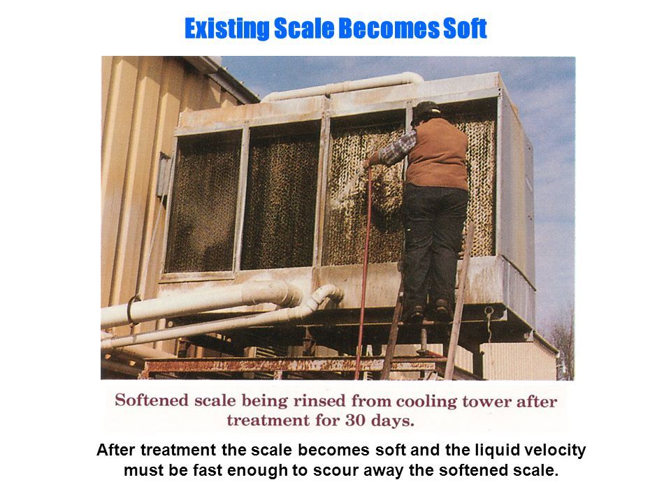 Existing Scale Becomes Soft