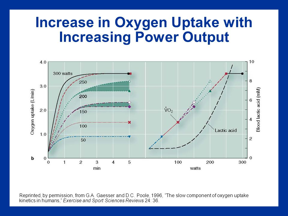 Increase in Oxygen Uptake with Increasing Power Output