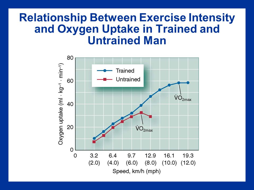 Relationship Between Exercise Intensity and Oxygen Uptake in Trained and Untrained Man