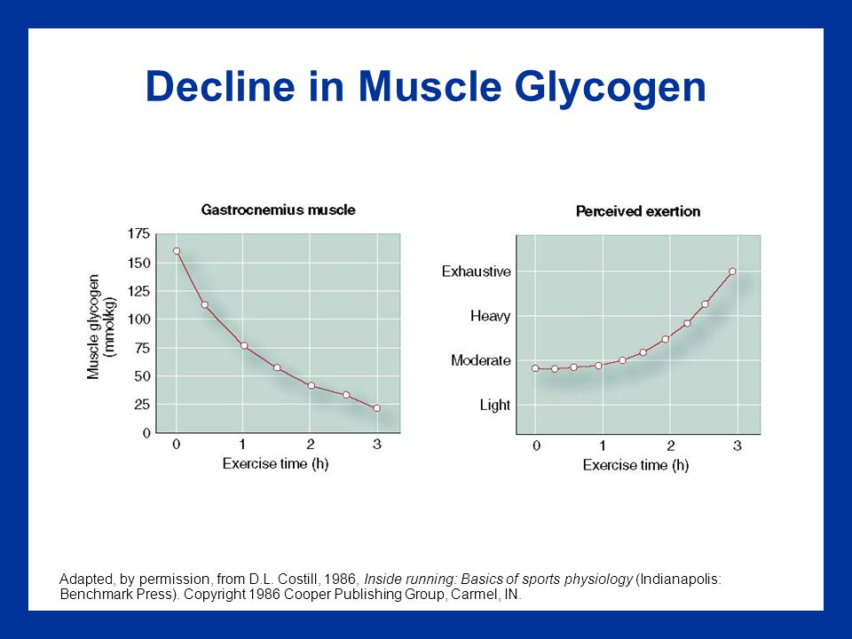 Decline in Muscle Glycogen