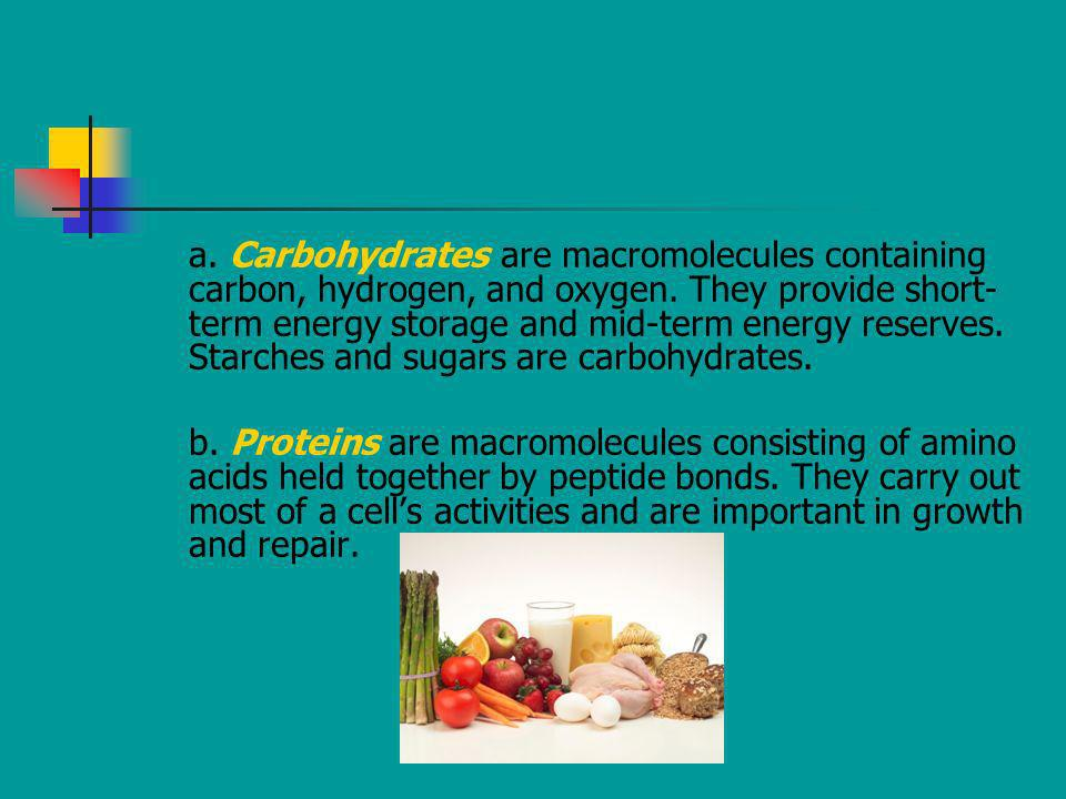 a. Carbohydrates are macromolecules containing carbon, hydrogen, and oxygen. They provide short-term energy storage and mid-term energy reserves. Starches and sugars are carbohydrates.