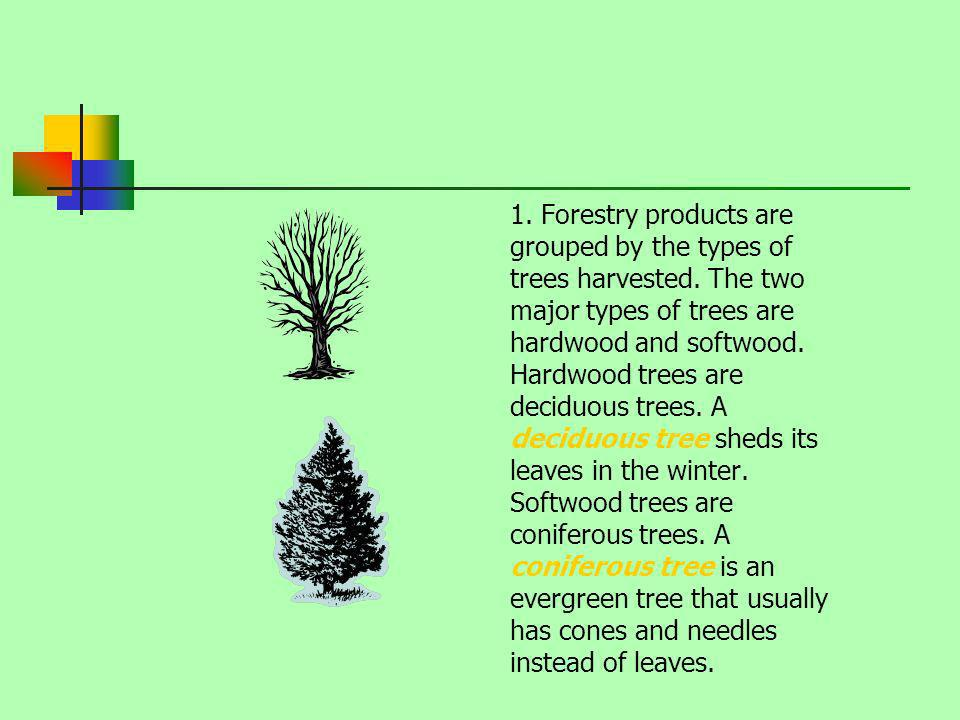 1. Forestry products are grouped by the types of trees harvested