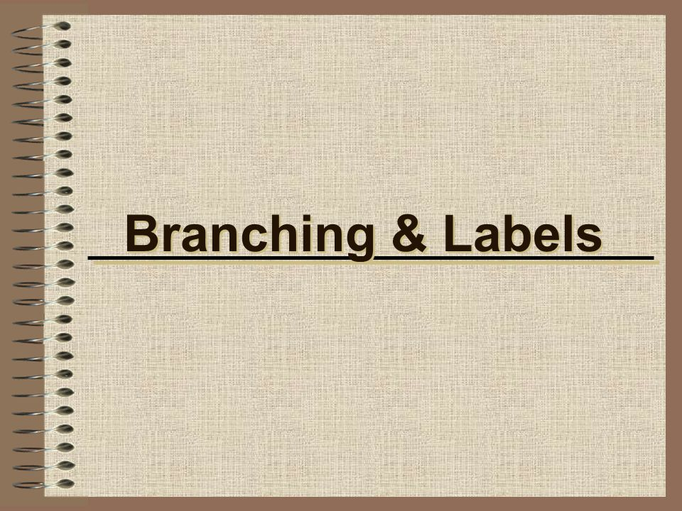 Branching & Labels
