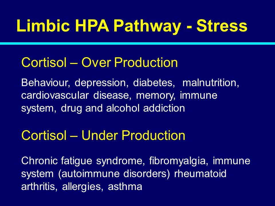 Limbic HPA Pathway - Stress