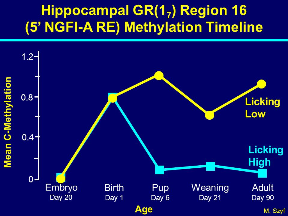 Hippocampal GR(17) Region 16 (5' NGFI-A RE) Methylation Timeline
