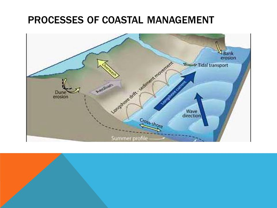 Processes of coastal management