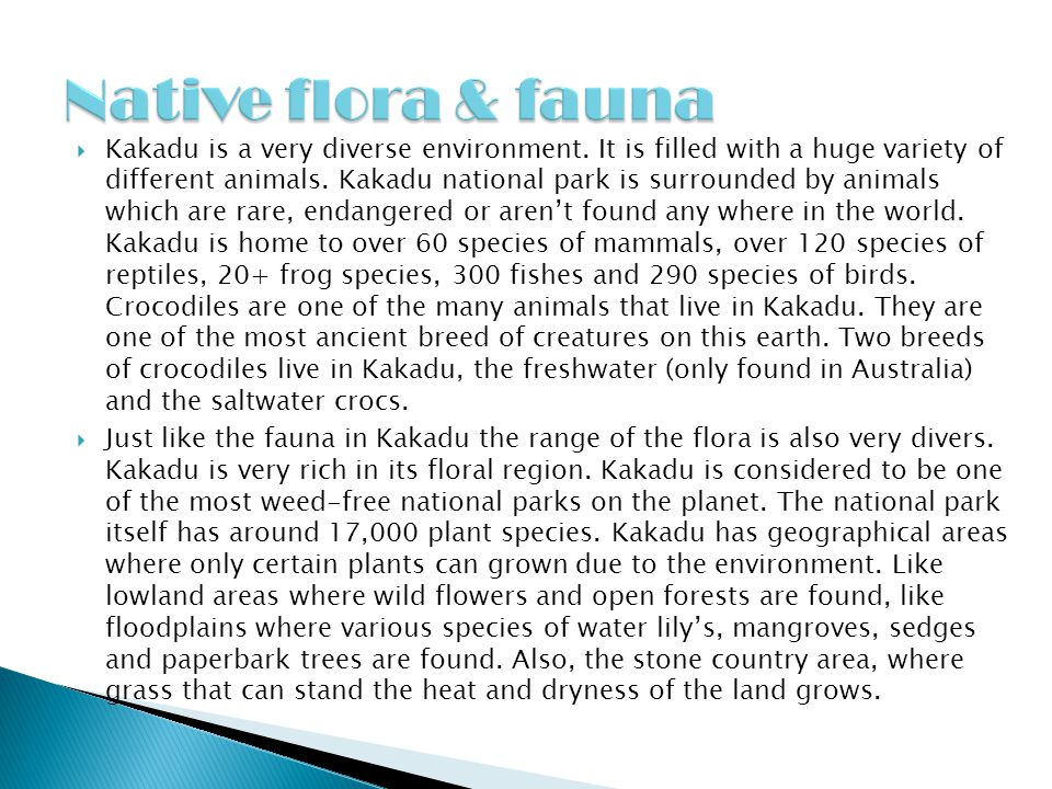 Native flora & fauna