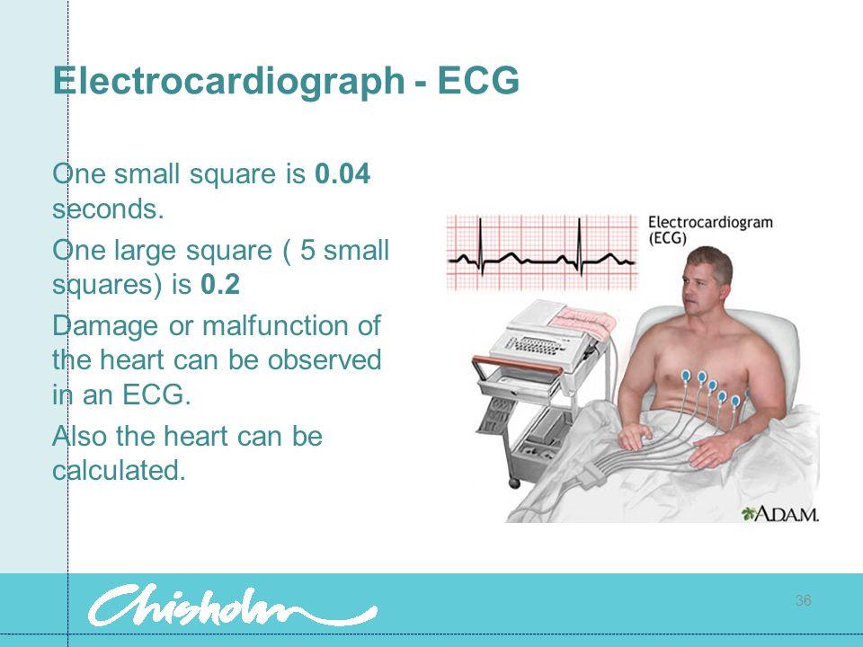 Electrocardiograph - ECG