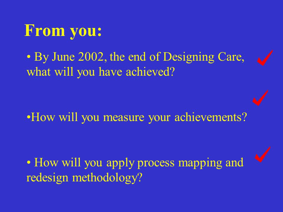 From you: By June 2002, the end of Designing Care, what will you have achieved How will you measure your achievements