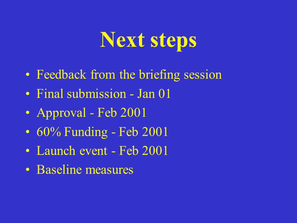 Next steps Feedback from the briefing session