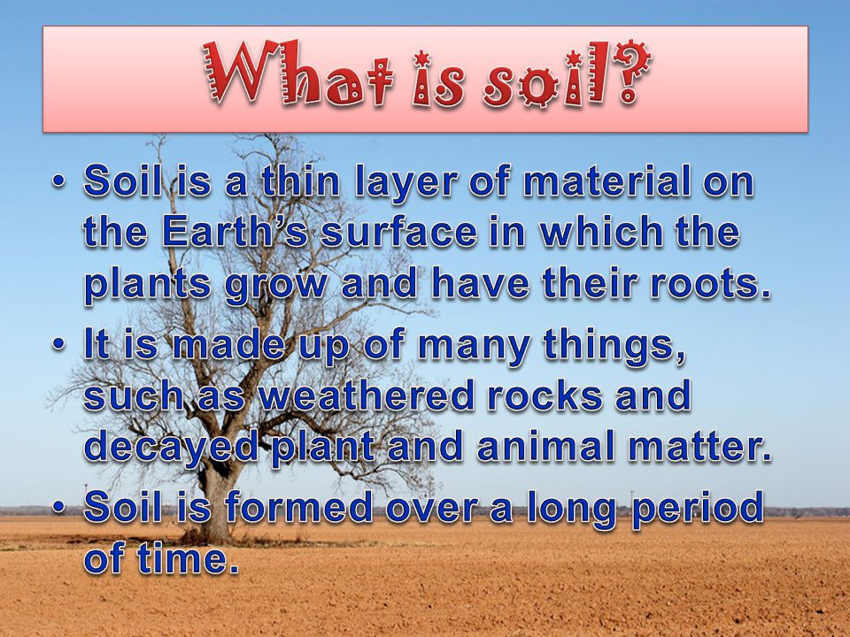 What is soil Soil is a thin layer of material on the Earth's surface in which the plants grow and have their roots.