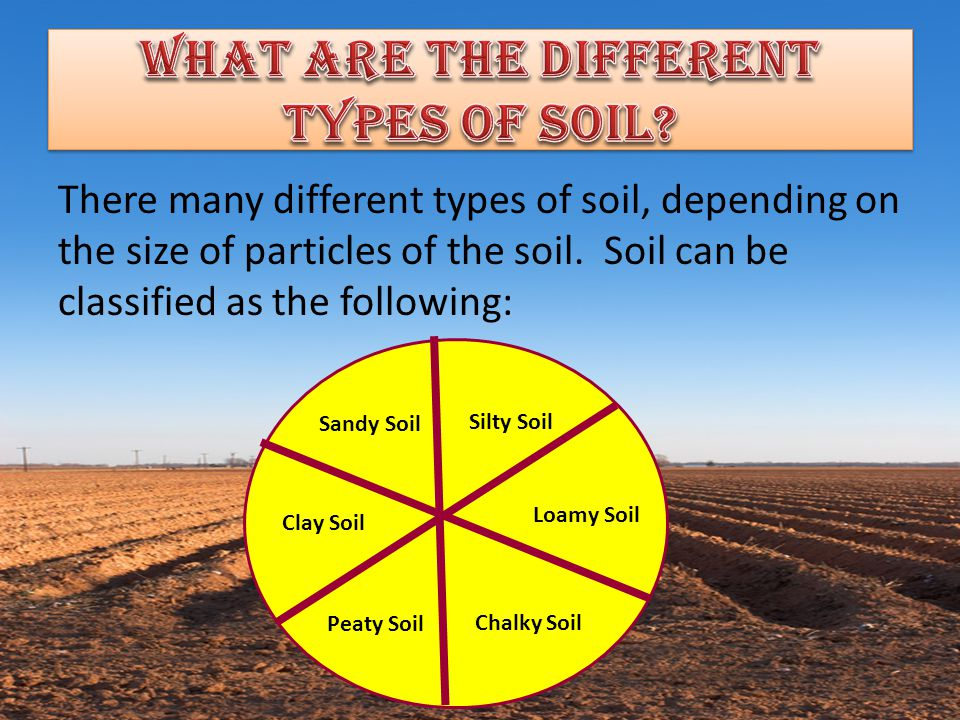 What are the different types of soil